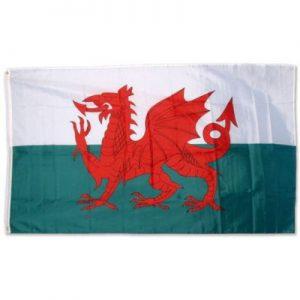 5X3 WALES FLAG