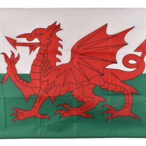 5′ x 3′ WALES FLAG
